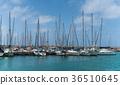 moored sailing ships at the pier 36510645