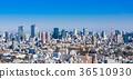 도쿄 시티 뷰 와이드 36510930