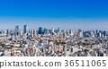 tokyo, tokyo tower, City View 36511065