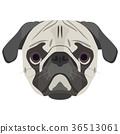 Illustration Dog pug 36513061