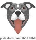 Illustration Dog Pitbull 36513068