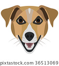 Illustration Dog Terrier 36513069