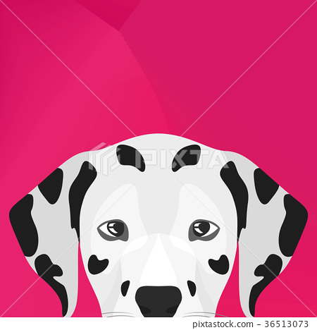 Illustration Dog Dalmatian looking over wall 36513073