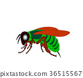Cartoon fly, insect with bright colors. Housefly 36515567