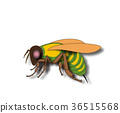 Cartoon fly, insect with bright colors. Housefly 36515568