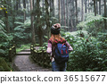 Young woman traveler walking in the forest 36515677