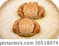 多毛的蟹食 36518074