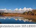 autumn, fall, grand 36518900