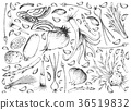 Hand Drawn of Bulb and Stem Vegetables Background 36519832