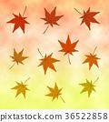 maple tree, pattern, patterns 36522858