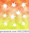 maple tree, pattern, patterns 36522859