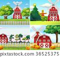 경치, 풍경, 농장 36525375