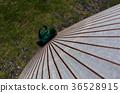 일본식 우산, 番傘, 일본식 36528915