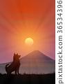 ภูเขาฟูจิ,ภูเขาไฟฟูจิ,แสงอาทิตย์ 36534396