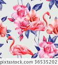 bird, blossom, flamingo 36535202