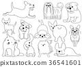 vector, vectors, line drawing 36541601