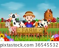 Farm scenes with many animals and farmers 36545532