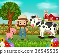 Farm scenes with many animals and farmers 36545535