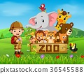 collection of zoo animals with guide 36545588