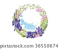แหวนดอกไม้ - ไอริส - ไอริส 36550674