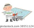 모내기를 시작 농가의 남자. 36551124