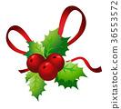 Holly sprig on white background  36553572