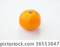 satsuma mandarin orange, mandarin orange, mikan 36553647