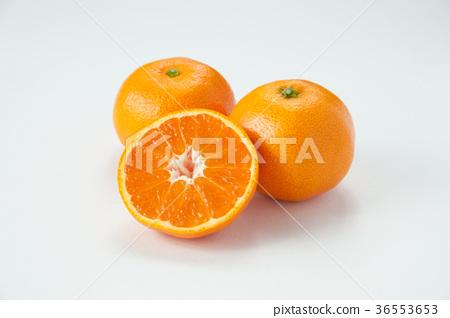 温州橘子 36553653