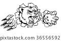 熊 保齡球 球 36556592