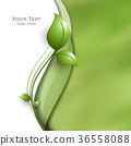 Vector  floral background 36558088