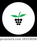 raspberry fruit simple black and green icon eps10 36559698