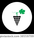 grapes fruit simple black and green icon eps10 36559709