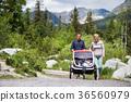 Senior couple and children in jogging stroller 36560979