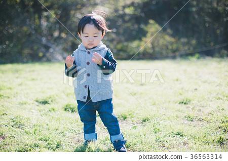 兩歲 兒童 小孩 36563314