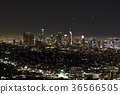 Night view of Los Angeles 36566505
