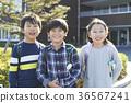 小學 36567241