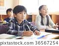 초등학교 36567254