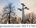 Electric line with leafless trees 36571780