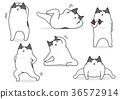 vector, vectors, cat 36572914
