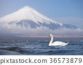 湖泊 湖 景色 36573879