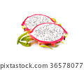 Dragon fruit isolated on white background 36578077