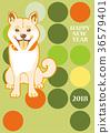 草丛 柴犬 丛林犬 36579401