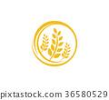 農業 設計 ICON 36580529