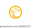 Agriculture wheat Logo Template vector icon design 36580537