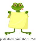 eye, frog, goggle-eyed 36580750