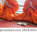 Buddhist Monk Praying 36581693