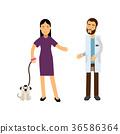 兽医 宠物 狗 36586364