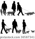 dog, man, walk 36587341