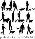 dog man person 36587343