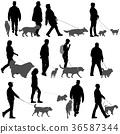 dog, man, walk 36587344